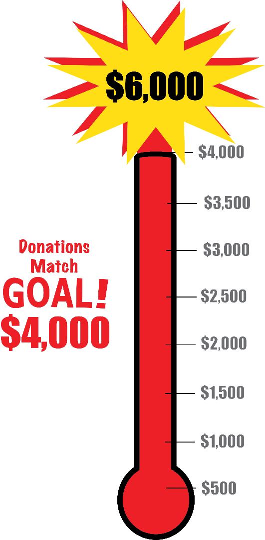 Donations Match Goal FINAL.png