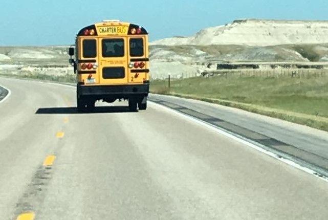 Bus pic2.jpg